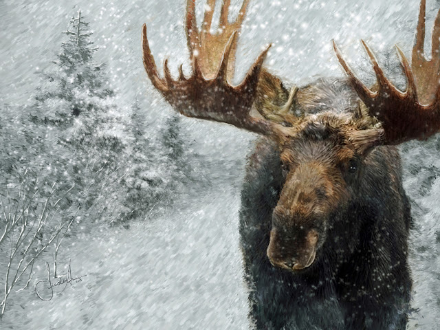 Moose In Winter Painting