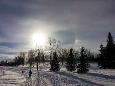 Cross country skiing at Confederation Park Golf Course