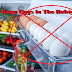The Dangerous Reason Why You Should Never Keep Eggs In The Refrigerator!!!