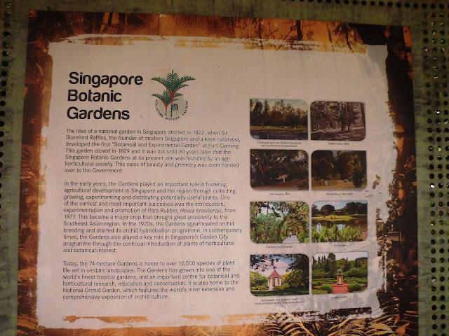 free masuk di singapore