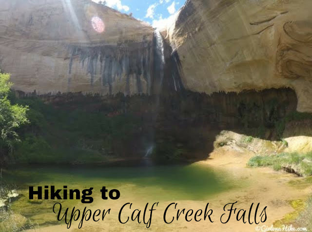 The Best Dog Friendly Waterfalls Hikes in Utah, Upper Calf Creek Falls Escalante