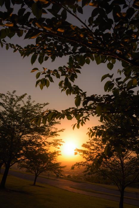 大乗寺丘陵公園の夕日
