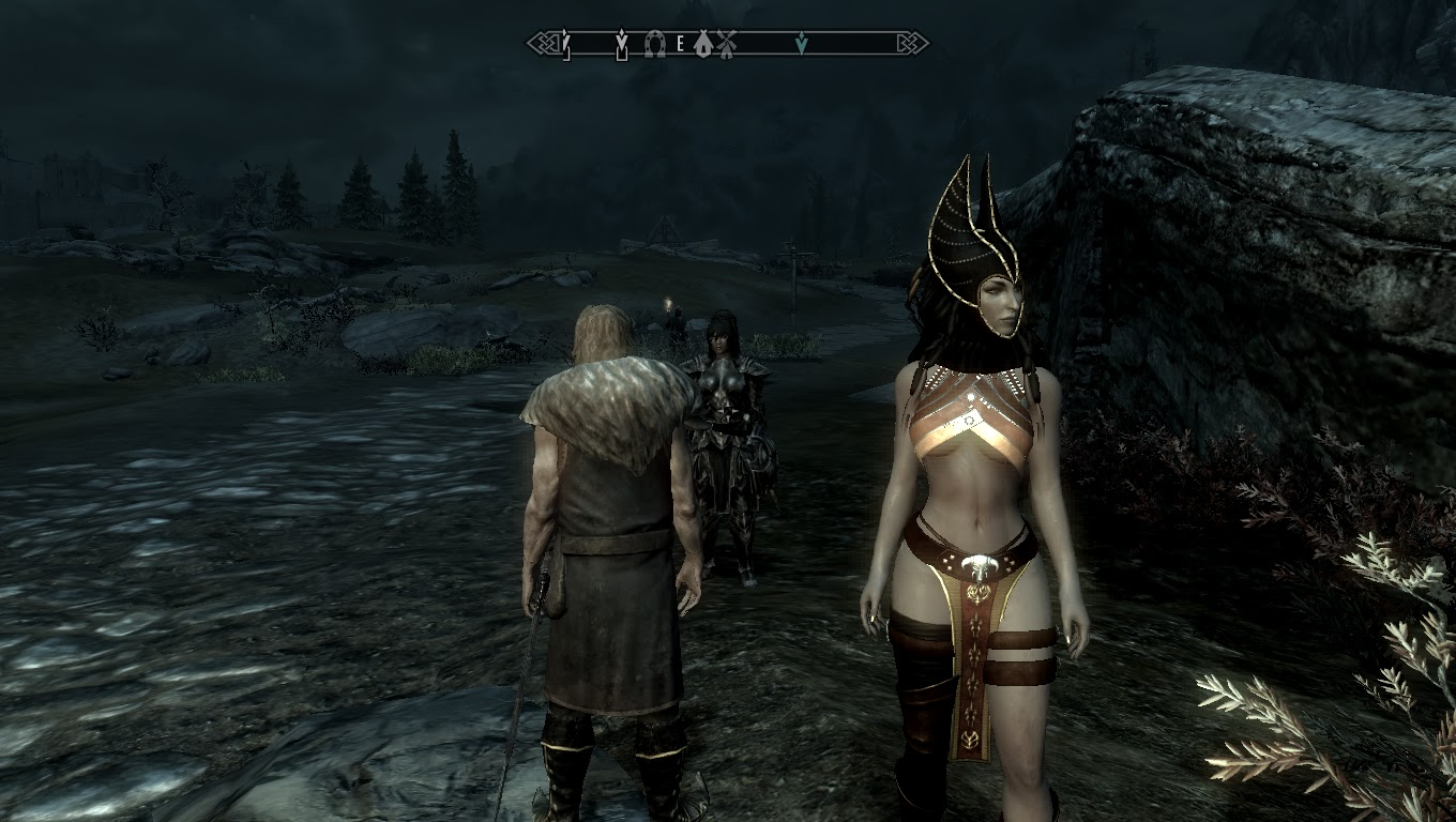 Skyrim Canvas: Two followers at the same time np :) just have to