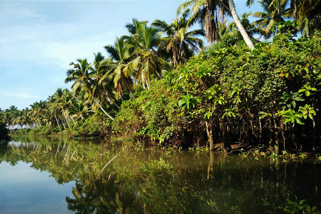 poovar backwaters kerala travel blog