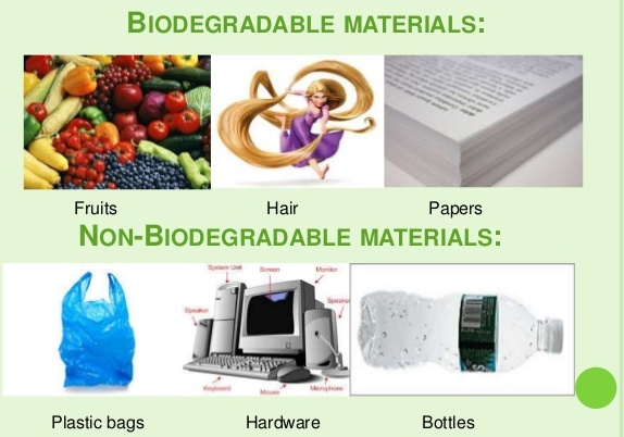 Learning about Biodegradable and Non Biodegradable Materials ...