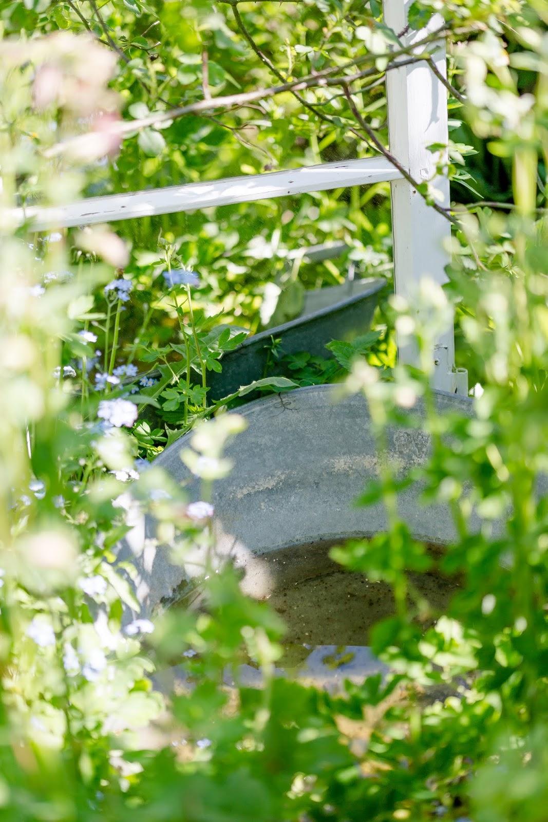 Spiegel Im Garten gartenimpressionen oder jetzt geht s los mit sommer pomponetti
