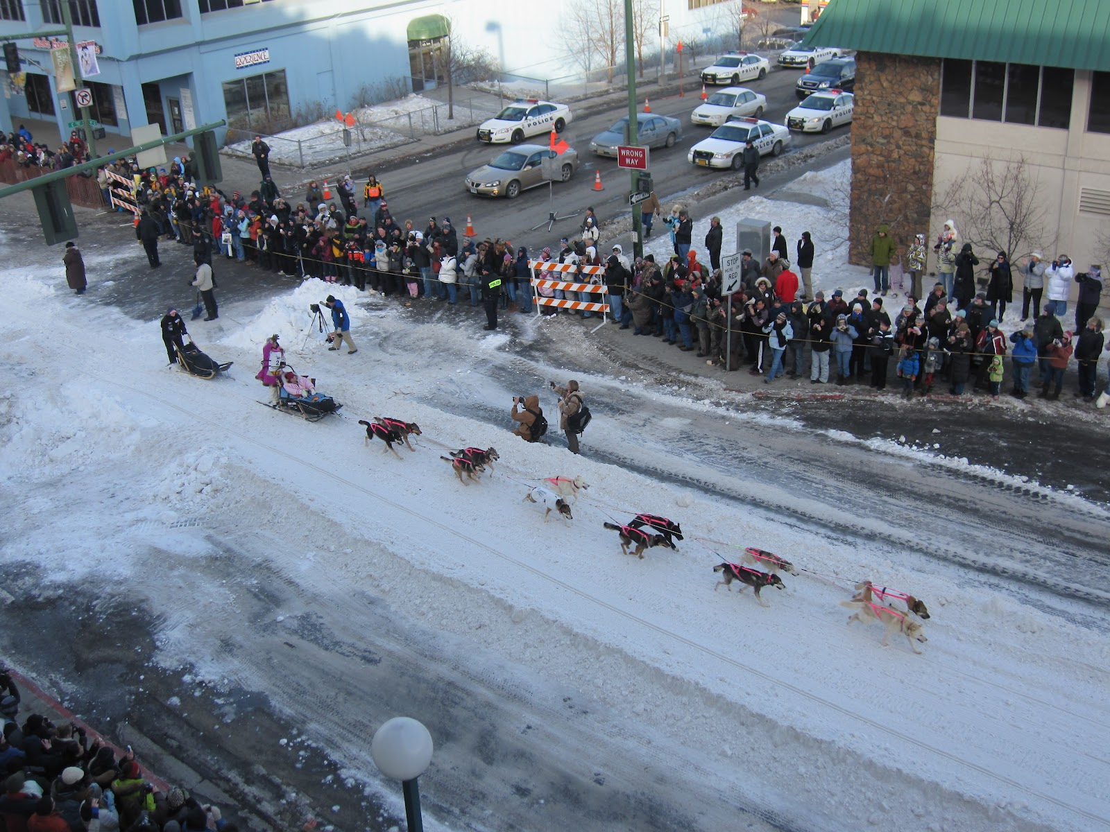 Iditarod Sled Dog Race, Alaska