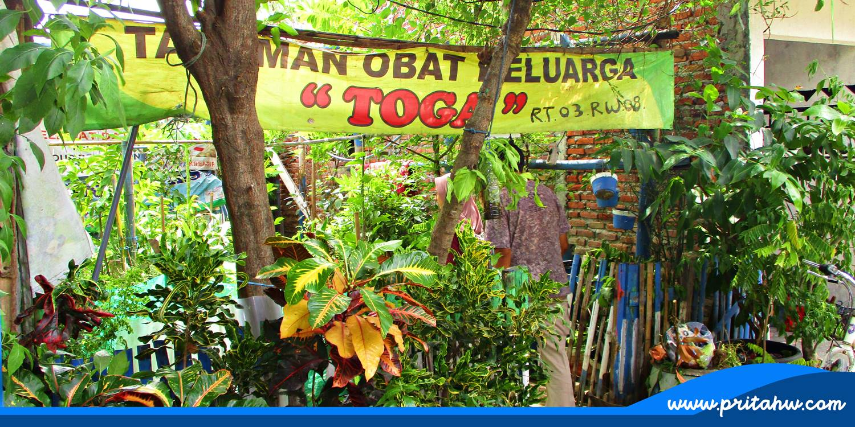 Berkunjung ke Kampung Keputih Tegal Timur a6d33c148d