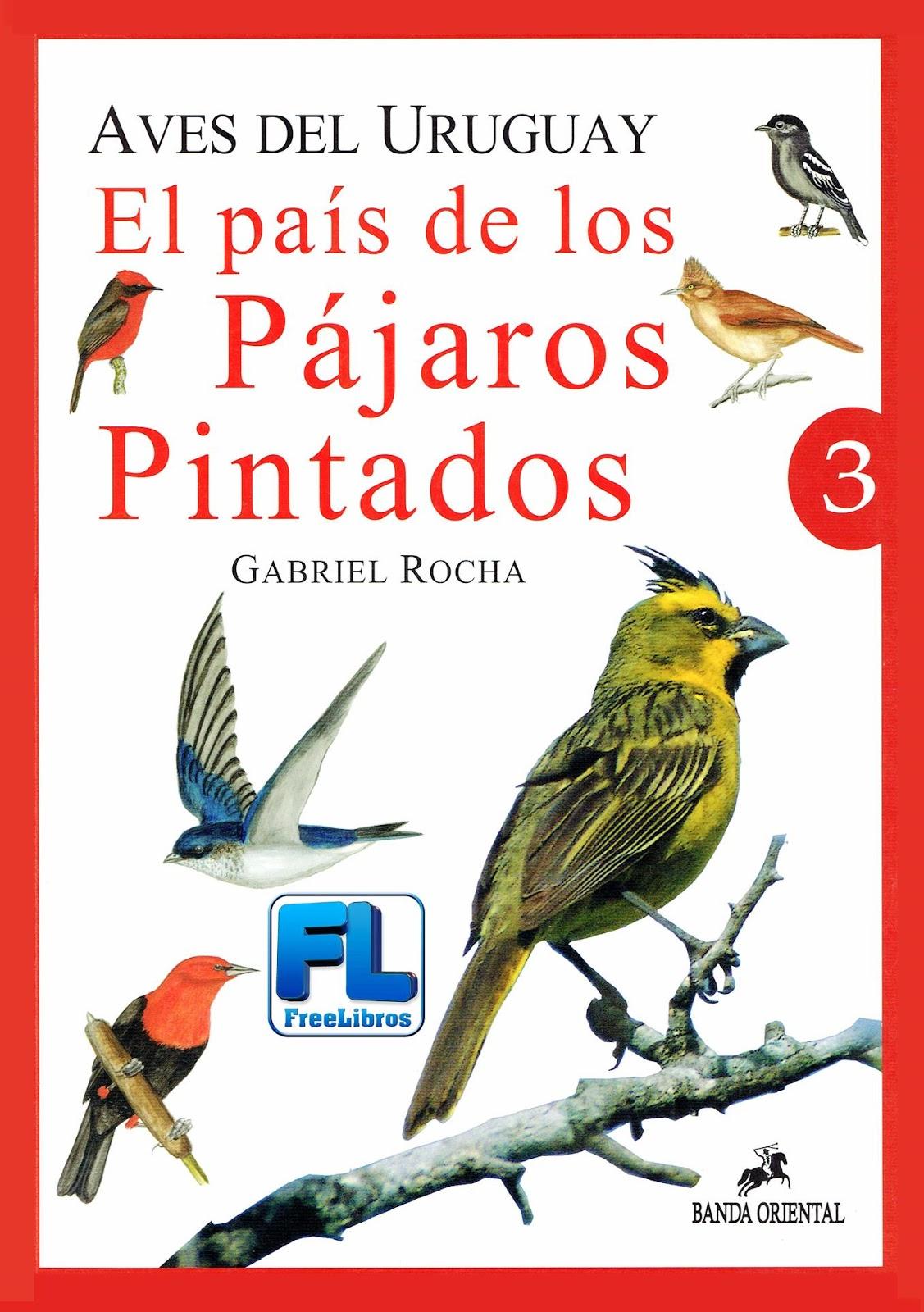 Aves del Uruguay: El país de los pájaros pintados, Vol. 3 – Gabriel Rocha