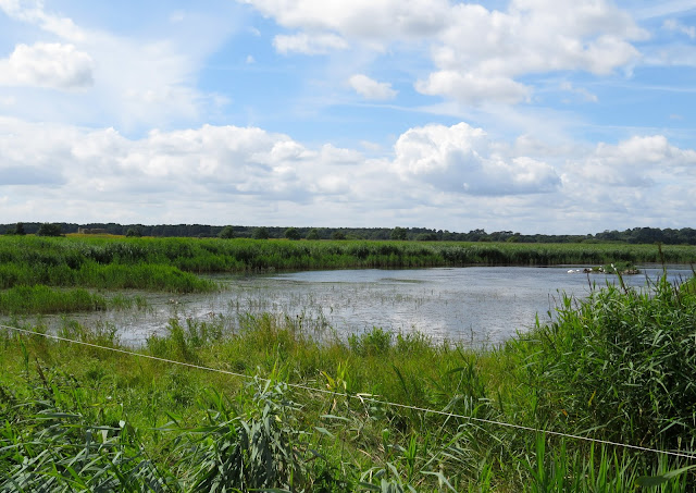 Minsmere, Suffolk