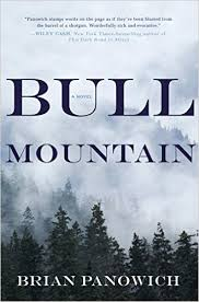 https://www.goodreads.com/book/show/23398919-bull-mountain?ac=1&from_search=true