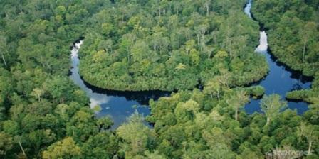 Kondisi Lokas aksesi Taman Nasional Bukit Tiga Puluh