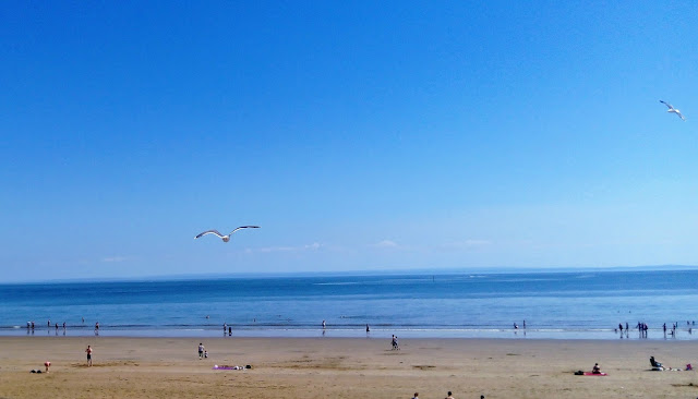 Sea gulls flying over Swansea beach