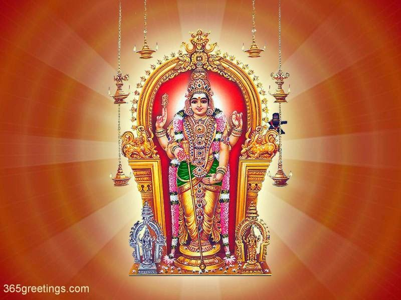 Kollywood Wallpapers Hd Lord Murugan Lord Subramanya Swamy Hd Wallpapers Images