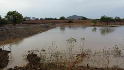 Chuva no Sertão Central enche pequenos açudes na madrugada deste domingo