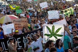 Почему легализация марихуаны приведет к ее распространению