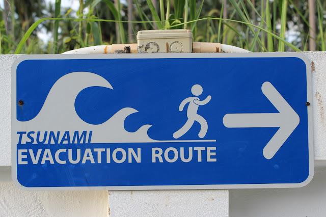 contoh report text tentang bencana alam tsunami