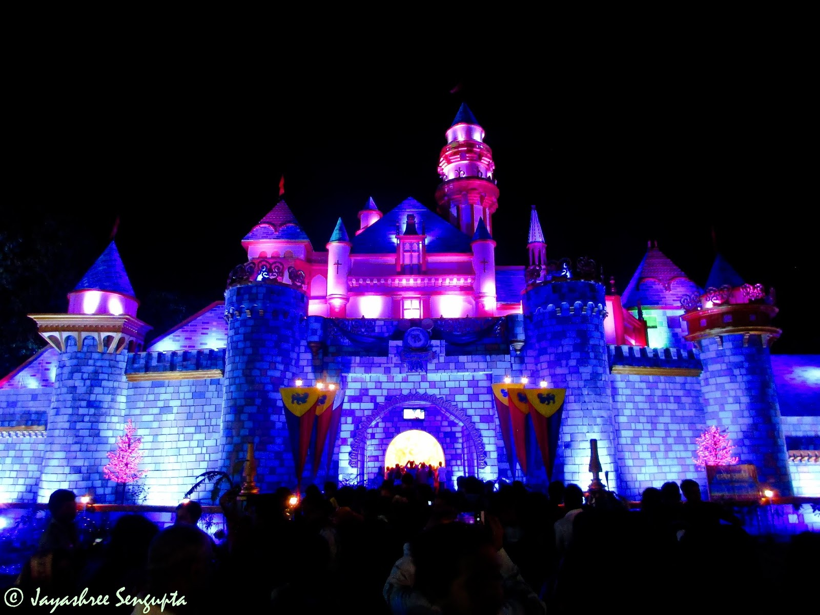 Deshbandhu Park's pandal themed on Disneyland.