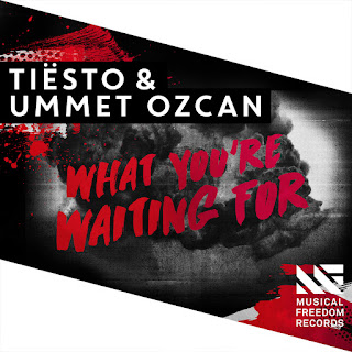 Tiësto & Ummet Ozcan - What You're Waiting For on iTunes