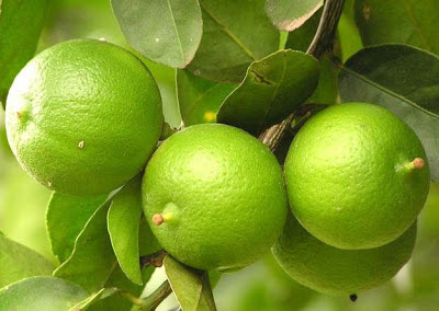 Benefícios limão suco de frutas para Face