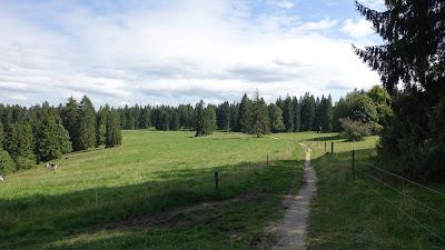 Trail in der Nähe des Etang de la Gruère