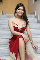 Rachana Smit in Red Deep neck Sleeveless Gown at Idem Deyyam music launch ~ Celebrities Exclusive Galleries 022.JPG