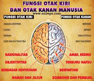 Fungsi Otak Kanan dan Otak Kiri