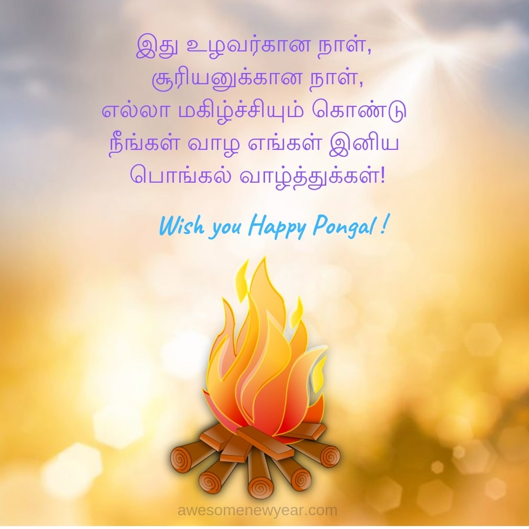 Send these unique Pongal Wishes in Tamil to your Friends and Family