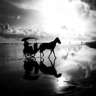 Paisaje blanco y negro -caballos