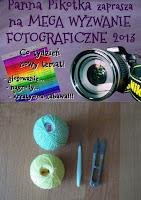 http://misiowyzakatek.blogspot.com/2013/11/sport-wyzwanie-foto.html