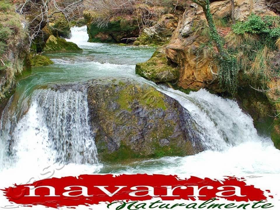 """PRESENTACIÓN  E INVITACIÓN AL ACTO DE LA EXPOSICIÓN PUBLICA DEL PROYECTO DE GESTION Y FUNCIONAMIENTO DEL ACCESO AL NACEDERO RÍO UREDERRA   La Comarca Turística de Urbasa Estella tiene una importante cita   el martes 25 de Marzo en Baquedano.  Se va a presentar el Plan de Gestión de la Reserva Natural del Nacedero del Urederra, elaborado por Turismo Navarra y el Departamento de Medio Ambiente.  Vamos a conocer cuáles son los límites tanto de personas  como de vehículos que se va a permitir  y las limitaciones s que se van a implantar a los viajeros   en su visita al Paraíso del Agua, el """"Nacedero del Río Urederra"""" para visitar """"La Ruta de las Cascadas Azules de Baquedano""""  La reunión es importante tanto para los Lobbys  Turísticos como para las empresas Alojativas de la Comarca Turística de Urbasa Estella, para que conozcan este proyecto, que va  a condicionar de una manera importante  tanto las visitas como el desarrollo del Turismo Rural de la zona.  En ésta reunión será importante conocer las opiniones  del sector turístico y las alegaciones y preguntas  y recomendaciones necesarias.  Es de esperar que no sean  unos meros espectadores  de las imposiciones  de los políticos y expongan sus puntos de vista y  las alegaciones oportunas.  Confiamos que no se cumpla una vez más  el axioma:  """"Todos los Lobbys de Turismo  tienen derecho a ser Indoctos.  Pero algunos, abusan del privilegio de manera permanente. """"     La Comarca Turística de Urbasa Estella tiene una importante cita   el martes 25 de Marzo en Baquedano."""