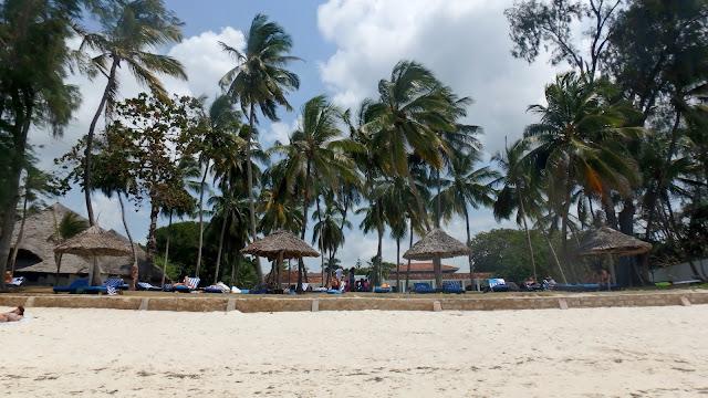 widok z plaży