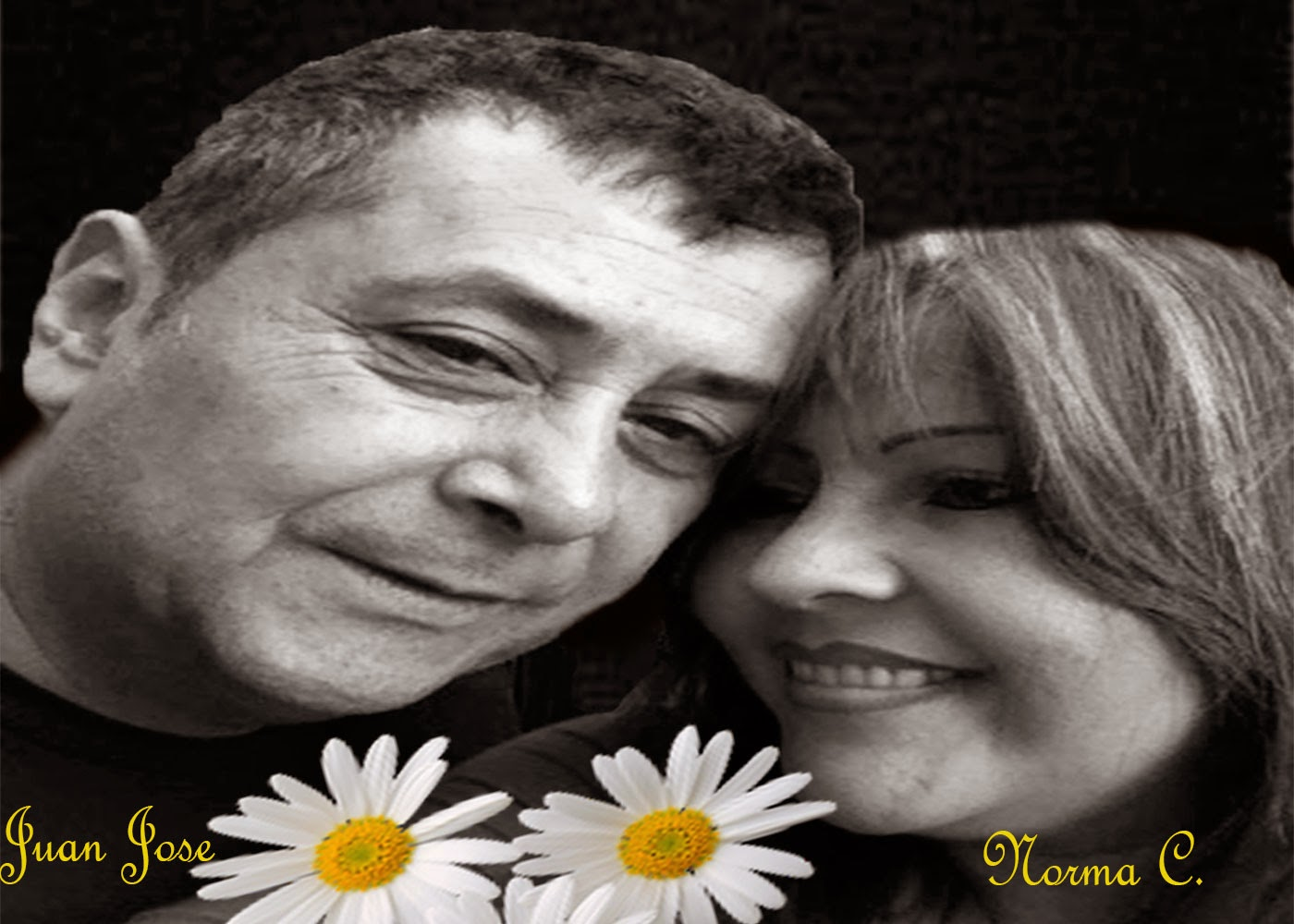rincon romantico konny 2014