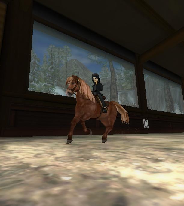 gångarter för häst