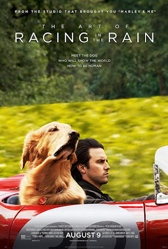The Art of Racing in the Rain (BRRip 1080p Dual Latino / Ingles) (2019)
