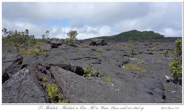 To Huluhulu: Huluhulu in View. All in Green. Lava could not climb up.