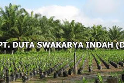 Lowongan PT. Duta Swakarya Indah Pekanbaru Mei 2019