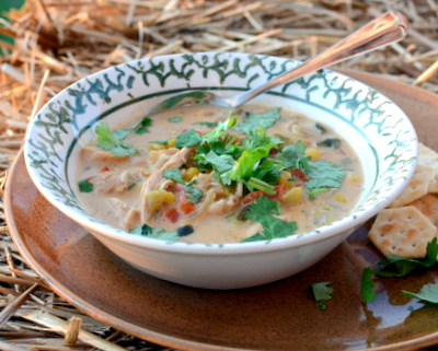 White Chicken Chili ♥ KitchenParade.com, a spicy-but-not-too-spicy concoction of chicken, spices, chilies and white beans, so good on a chilly night! Fresh & Seasonal. Hearty & Filling. Weight Watchers Friendly. High Protein.