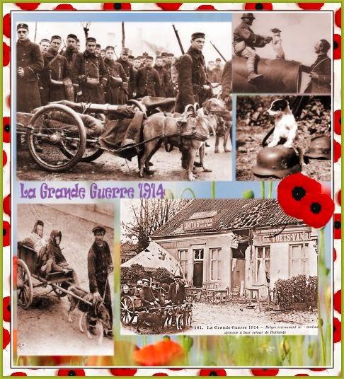 premiere guerre mondiale, exodus,population civille, chien de trait