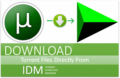 Download torrent in IDM