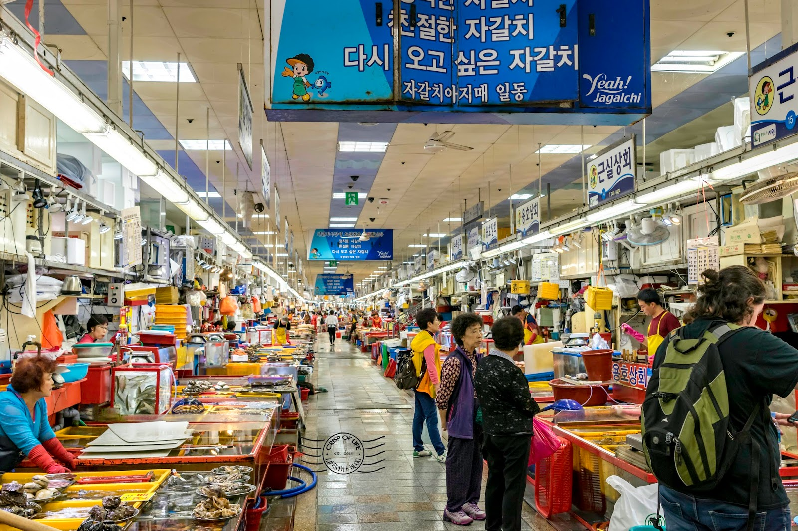 Busan 3 Days Itinerary - What Things to Do and See