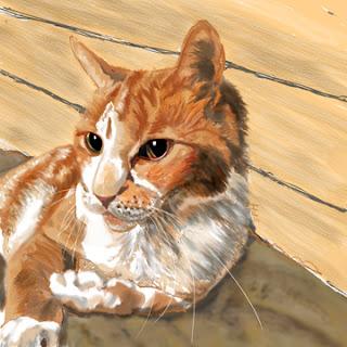Cat Portrait by Melasdesign
