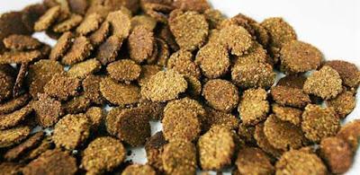 Cereal de cáscara de Sandía