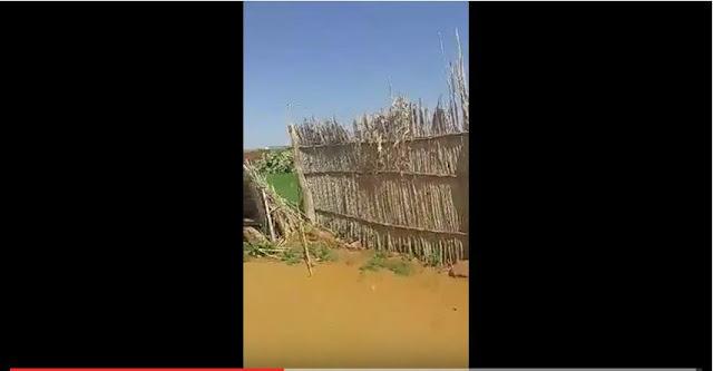 سور من قصب:شوهة المدارس المغربية وقلعة السراغنة مثلا