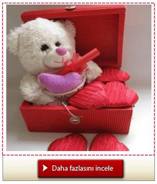 Sevimli Ayıcıktan Aşk Mesajınız