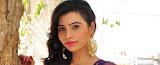 Priyanka launching Ikat Art Mela