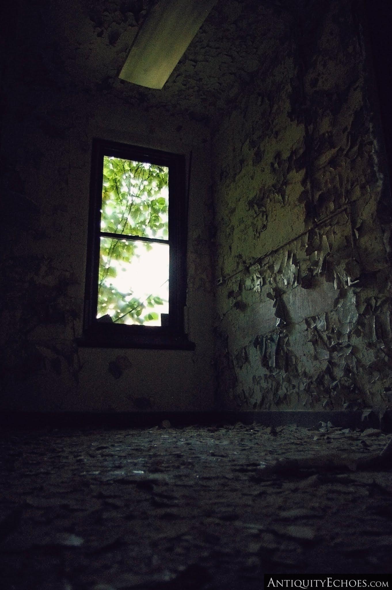 Overbrook Asylum - Green Hues