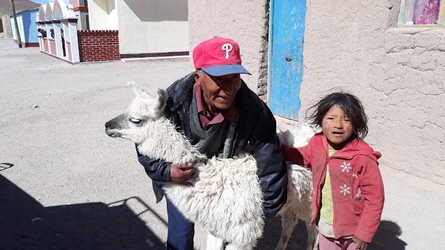 Die Menschen in den Anden lieben ihre Lamas