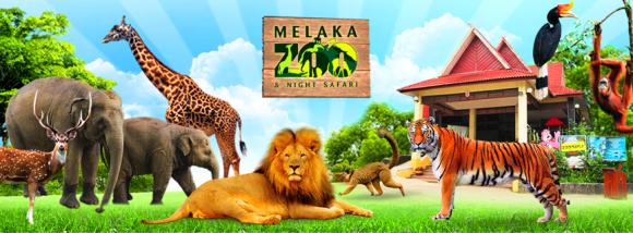 Zoo Melaka & Safari Malam.