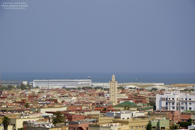 Panorama Casablanki. Widok z minaretu